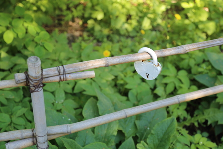 chink: Big white padlock hanging on the fence of bamboo stalks