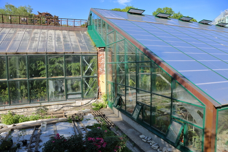 exotic plant: Greenhouse with glass walls and roof for growing exotic plants Stock Photo