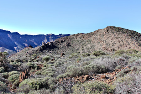 uninhabited: The uninhabited part of the giant mountain valley with rocks and dry plants