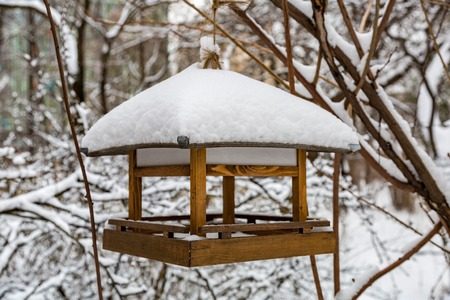 Wooden bird feeder in the snow-covered winter city park