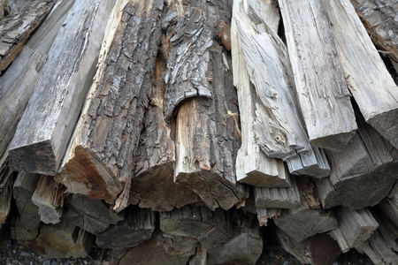 Dry firewood for firing and heating lie in a pile in the backyard
