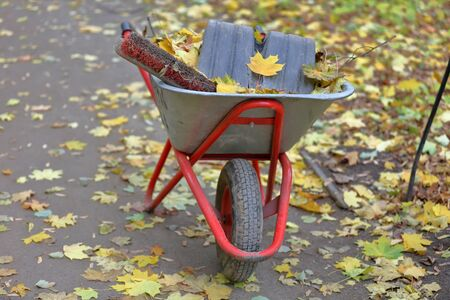 Iron trolley for autumn garden and backyard cleaning Imagens