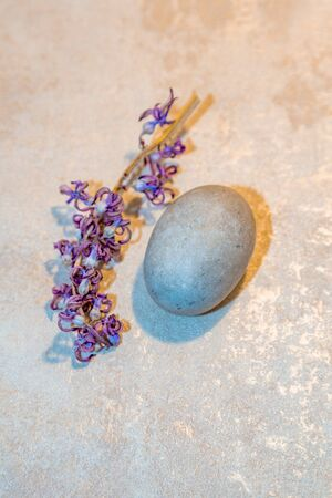 Oval smooth stone in the shape of an egg and a flower of a purple dried plant