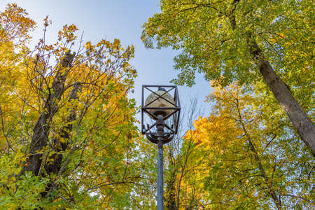 Vintage black iron lantern in a public park