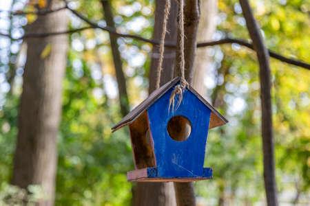 Wooden birdhouse-feeder in the summer city park