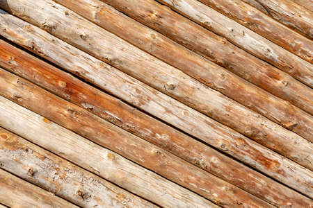 Textured surface of natural wood decorative materials