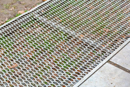 Patterned iron protective lattice. Garden and courtyard landscaping and design element