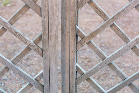 Textured surface of natural wood decorative materials in the garden