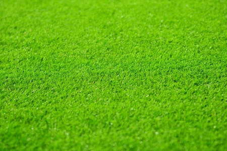 Grass background of the soccer  football  stadium pitch  photo