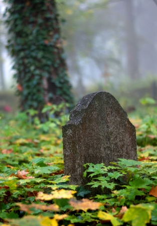 Old Gravestone with leaf on autumn Stock Photo