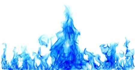 fuego azul: el fuego azul flamea en el fondo blanco