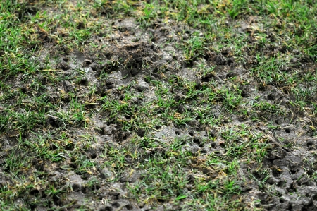 damaged pitch by soccer shoes photo