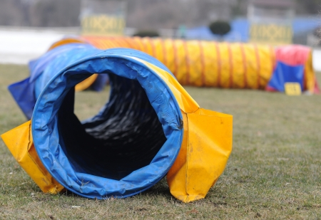 Agility equipment tunnel for dog