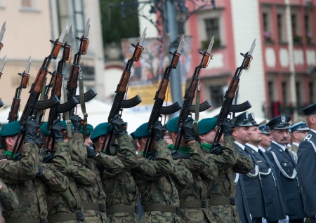 Wroclaw - August 15: Gun salute (Day of Polish Army) on August 15 2013 in Wroclaw, Poland