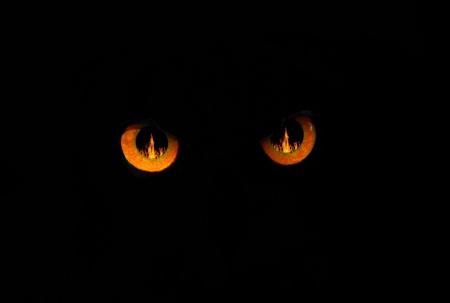 b�se augen: Schlechte Augen