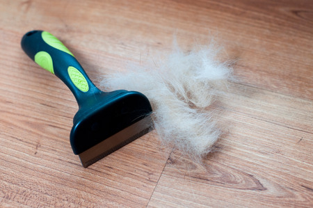 shephard: A pile of dog hair with a slicker brush Stock Photo