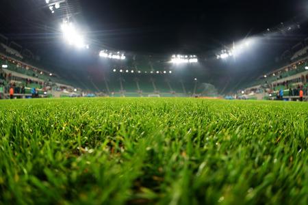cancha deportiva futbol: estadio, de cerca en la hierba