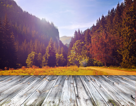 Wood terrace and perspective view on forest mountains photo