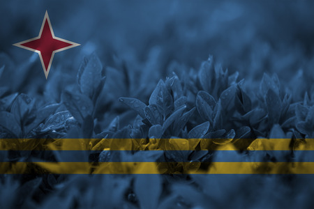 aruba flag: close up on leaf with blending  Aruba flag Stock Photo