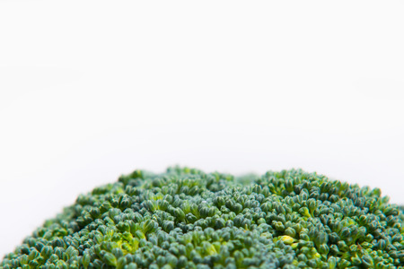 solated on white: close up on Fresh broccoli solated on a white background