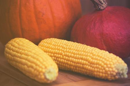 Pumpkins and corn arrangement on wooden background
