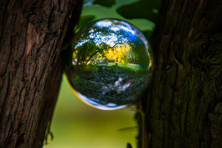 Close up on nature in the cristal ball Stock Photo