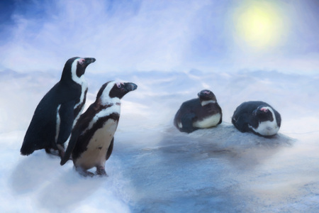 penguin in the snow and ice, blue sky and sun, drawn effect