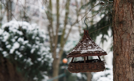 close up on bird house on winter