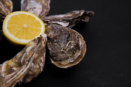 Oysters plate with lemon on grey background Stock Photo