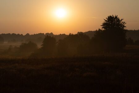 morning on meadow. sunrise landscape photo with vintage effect