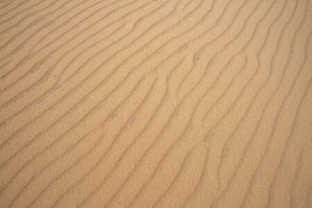 texture or background of desert dune sand