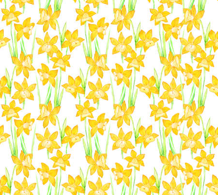 Botanical seamless pattern with yellow flowers daffodils, narcissus on white background. Floral design wallpaper, textile Illustration, interior and home fabric