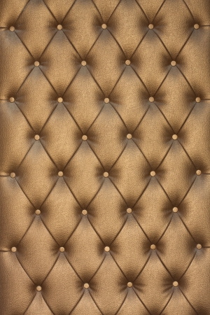 leather texture: The background of my sofa.