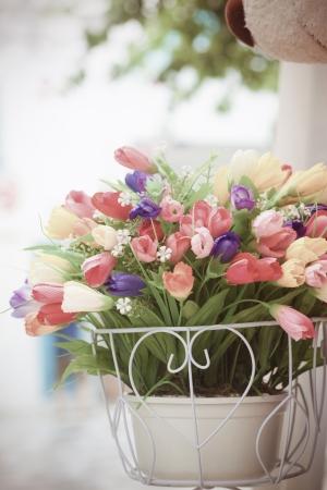 galvanised: Bucket flowers in the garden Stock Photo