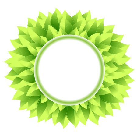 leaf background: Green leaf background design