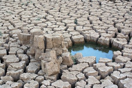 The cracked earth and is a little water               photo