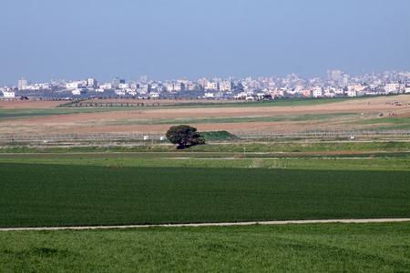 autonomia: Valla entre Israel y la Autonom�a Palestina