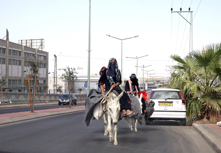 paranja: BEER SHEVA, ISRAEL -  OCTOBER 18, 2012: Bedouin woman riding on donkeys go on the roadway and violating road rules Editorial
