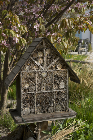 tar paper: Insect Hotel under cherry tree