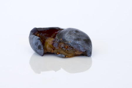 icky: Close-up of ripe, smashed blueberry (side view)