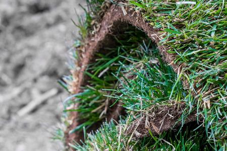 Pile of sod lawn (diagonal view) Stock Photo