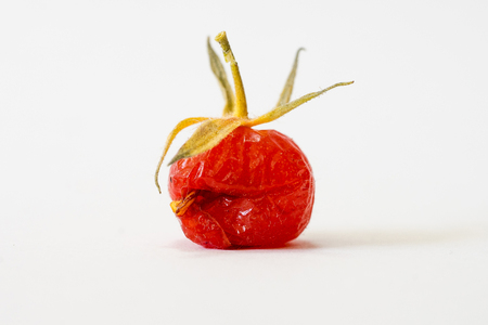 Close-up of overripe and torn wild tomato II Stock Photo