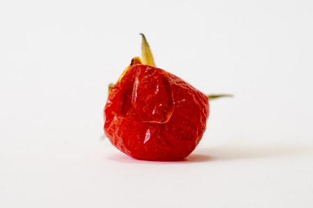 Close-up of overripe wild tomato from below Stock Photo