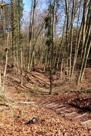 Old moat at castle remains Torfelsen close to Beilngries, Germany