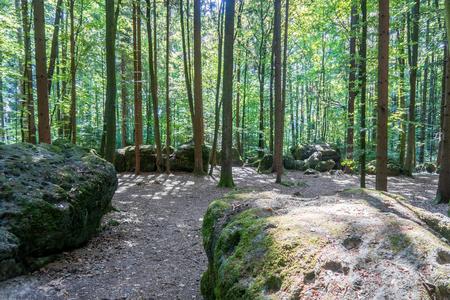 Druid's Grove (Geological Structure) near Wohlmannsgesees, Bavaria