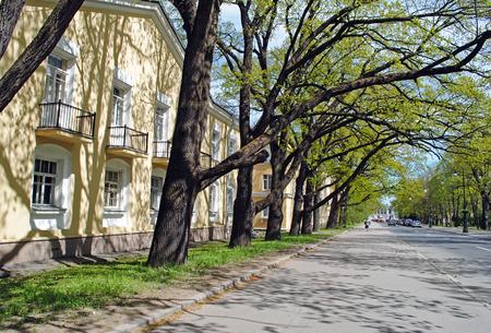 tsarskoye: Spring street in Tsarskoye Selo, Russia Stock Photo