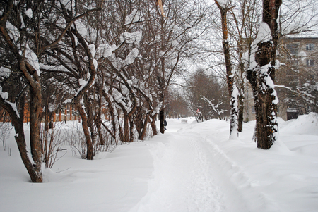 snowdrifts: big snowdrifts in the winter street Stock Photo