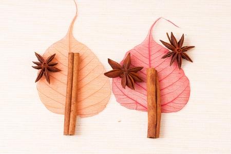 Cinnamon sticks, anise stars and skeletone leaves on table  photo