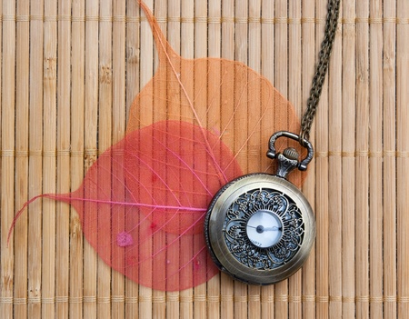 Pocket watches and red and orange leaves photo