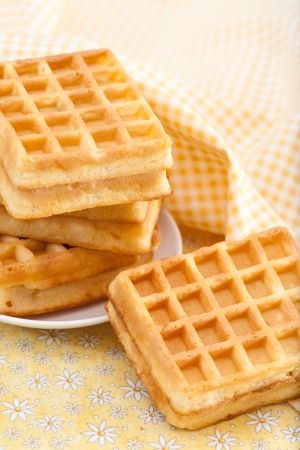 Sweet Belgian waffles on a plate